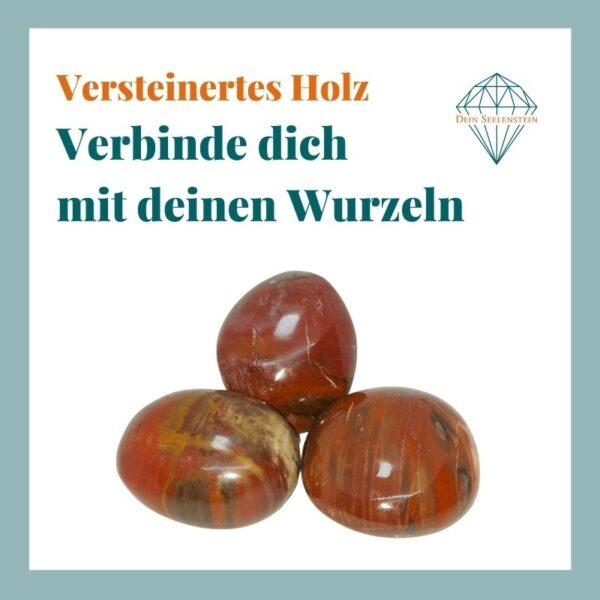Dein-Seelenstein-Produkt-versteinertes-Holz-Spruch