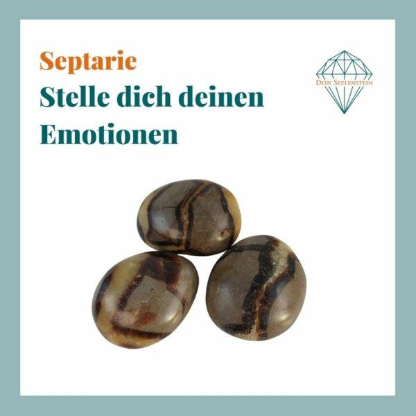 Dein-Seelenstein-Produkt-Septarie-Spruch
